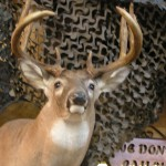 LET US HELP YOU BAG THE BIG BUCK!